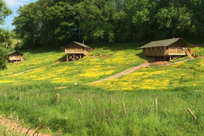 Three luxury safari tents, set in Brownscombe's flower meadow