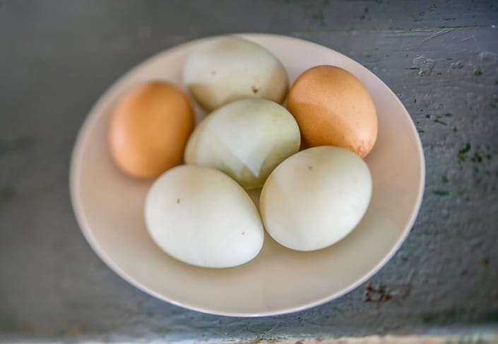 Six brown and white eggs on a plate