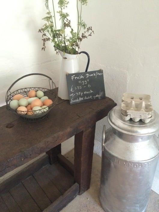 Fresh local duck eggs, for a true taste of Devon holiday