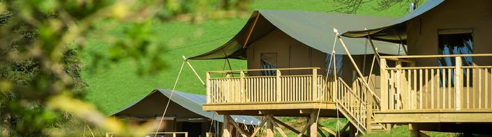A photo showing the front of the three safari tents at Brownscombe Luxury Glamping