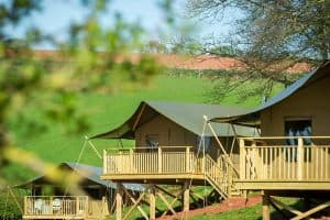 The three safari tents at Brownscombe Luxury Glamping