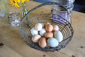 Fresh eggs from the Brownscombe farm